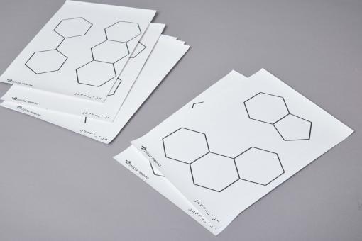 """Punktschriftabbildungen """"Skelettformeln - Template zur Darstellung komplexer Moleküle"""""""