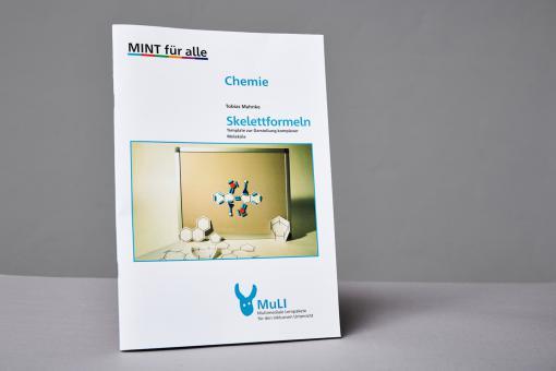 """Heft Printversion """"Skelettformeln - Template zur Darstellung komplexer Moleküle"""""""